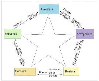 ¿Qué son las Ciencias Ambientales?