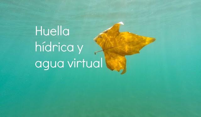 ¿Qué es la huella hídrica y el agua virtual?